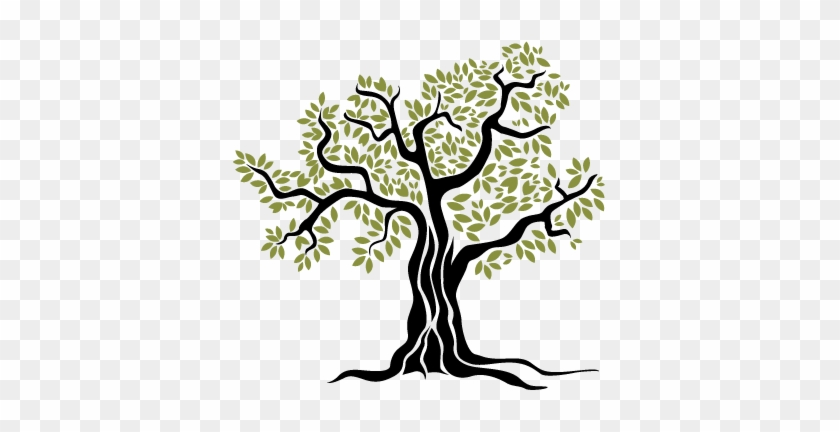 Arbol Del Olivo - Olive Tree Vector Png #271725