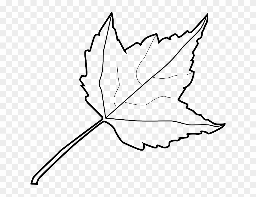 Explore Autumn, Clipart Black And White, And More - Outline Image Of Leaf #271971