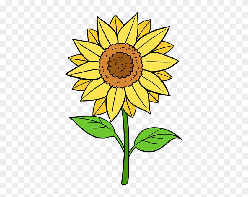 How To Draw A Sunflower - Draw A Sunflower Step By Step #272083