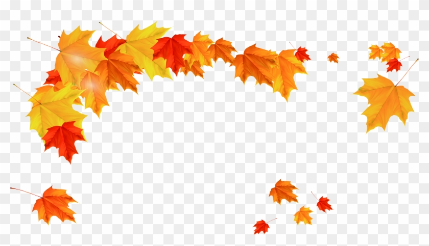 Maple Leaf Autumn - Yellow Leaves Border Png #272190
