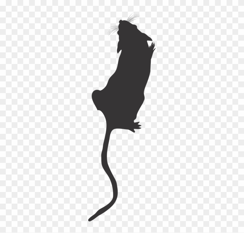 "Mice On The Rise €"" The Journal Rewired - Mouse Silhouette Png #273744"