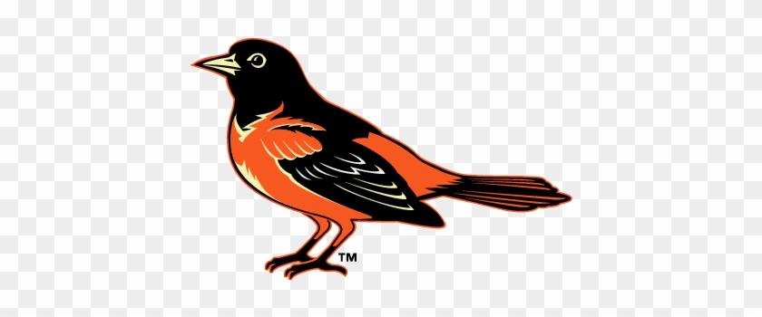 Baltimore Oriole Clipart - Baltimore Orioles #275707