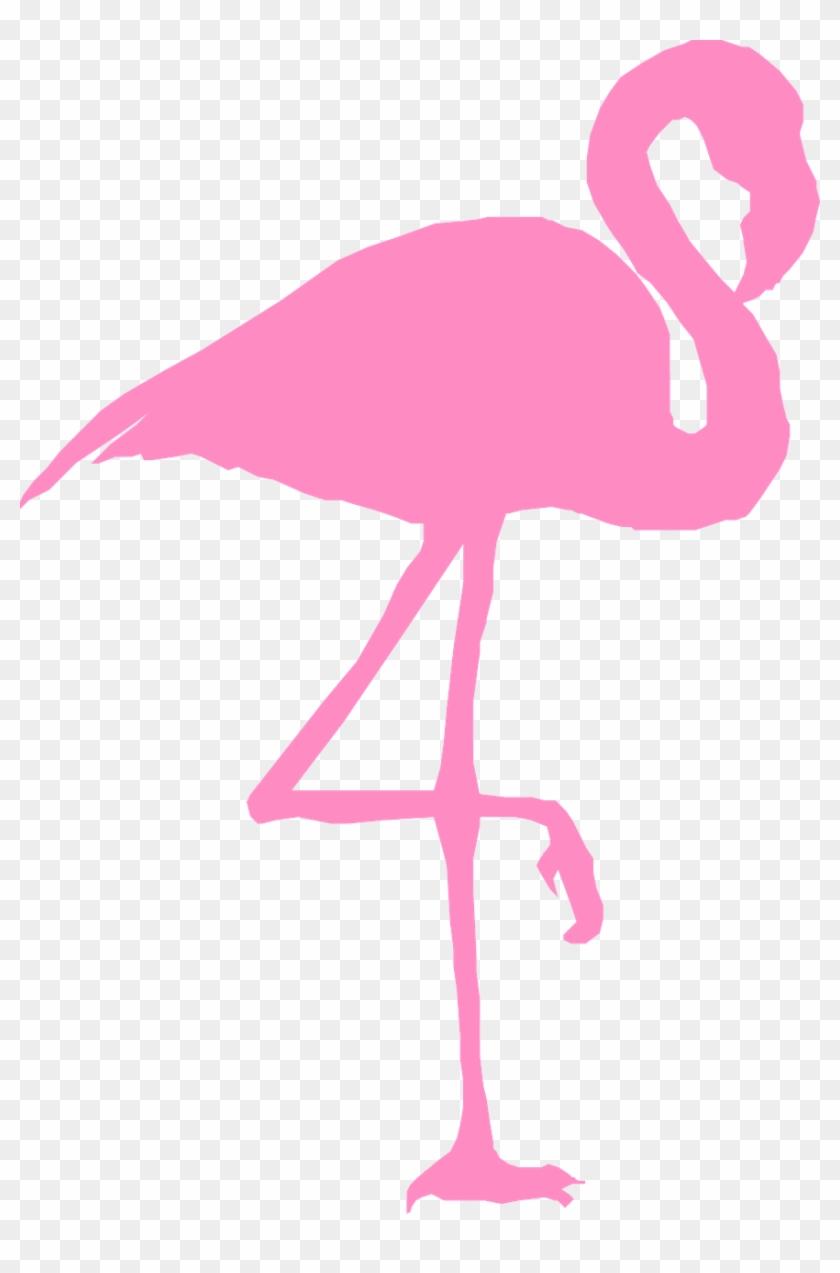 Flamingo Bird Silhouette Pink Png Image - Clip Art Flamingo #276563