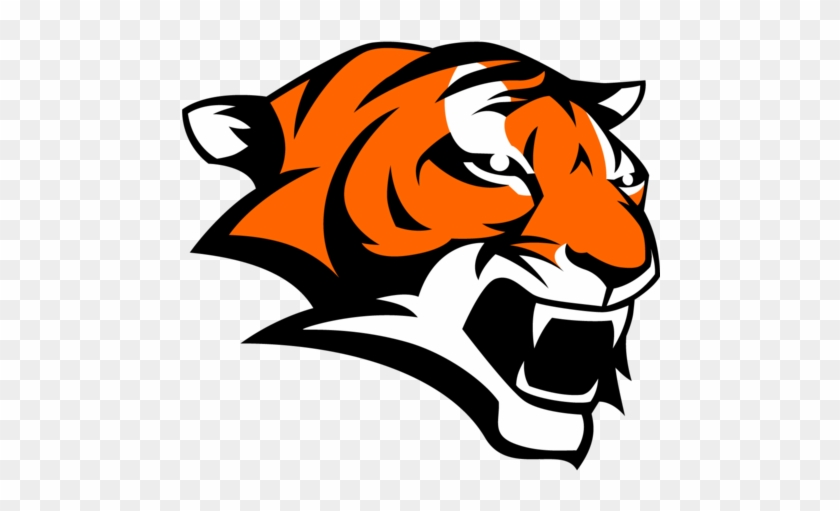 Marple Newtown High School Football At Garnet Valley - Marple Newtown High School Tiger #277360