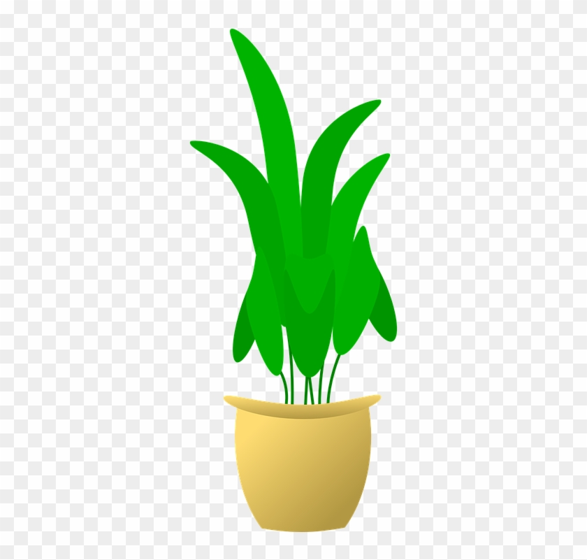 Flower Pot Clipart 24, Buy Clip Art - Plant In Pot #278292