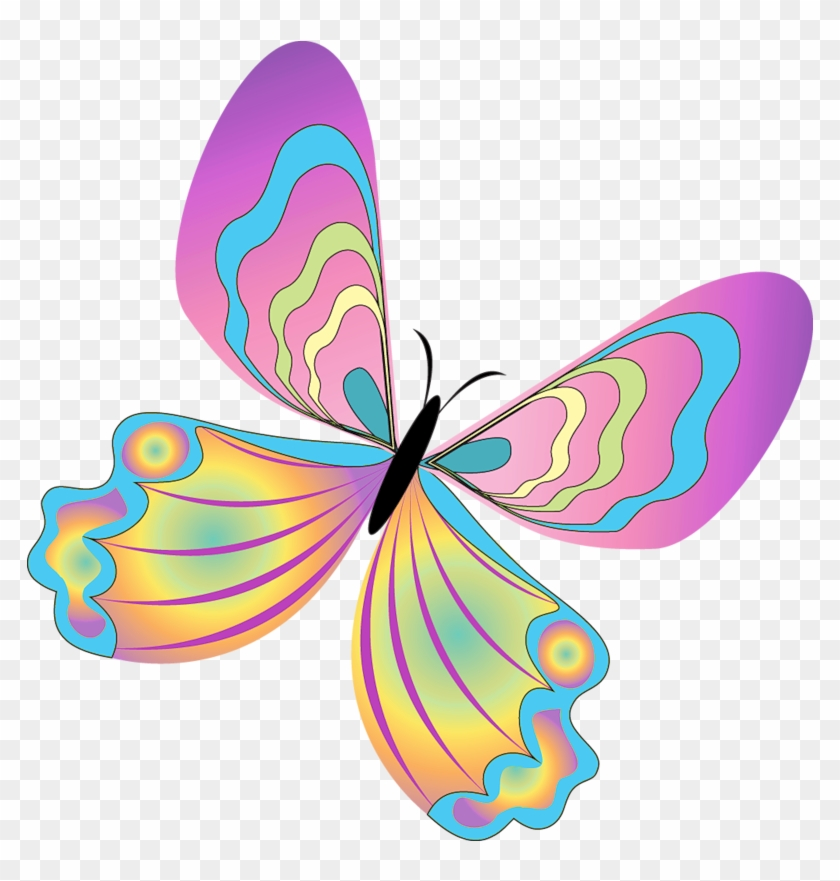 Png Clip Art Free Download Funny Butterfly Pictures - Cute Butterfly