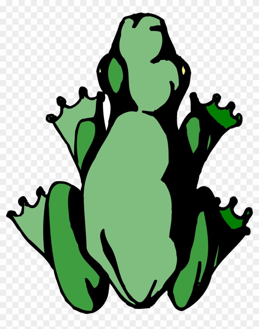 Lily Pad Cartoon 25, Buy Clip Art - Cartoon Frog Birds Eye View #278995