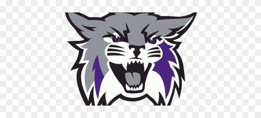 Wildcat Clipart Wildcat Head - Weber State Wildcats Mascot #279249