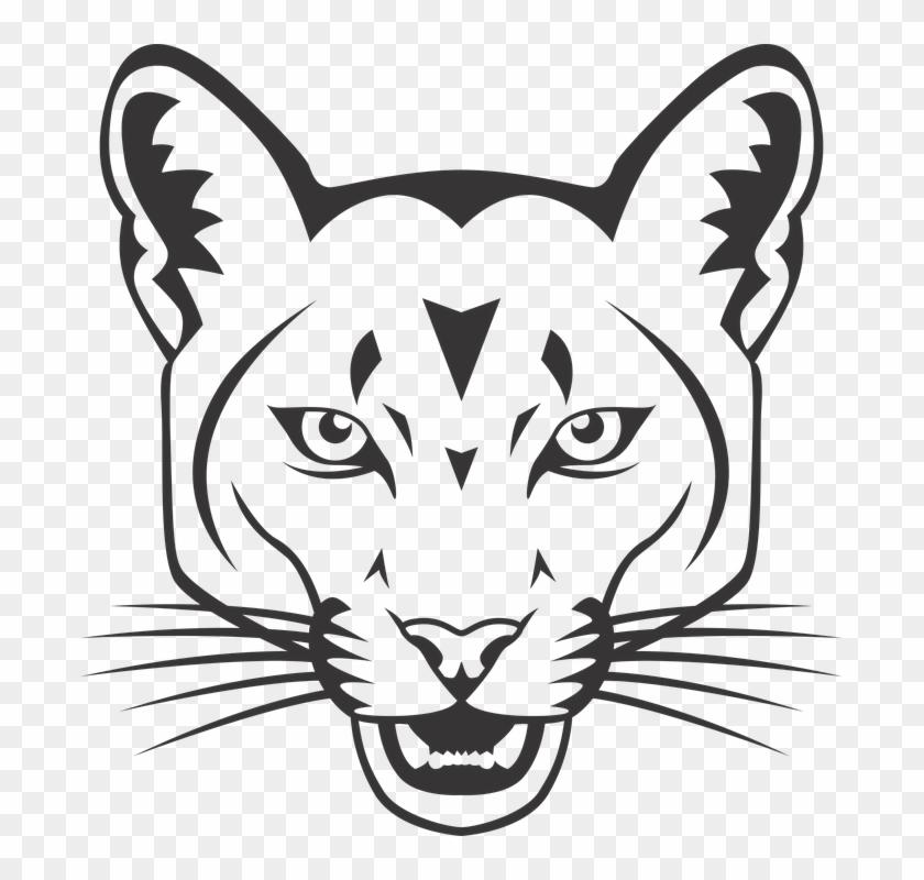 Wildcat Mascot 11 Buy Clip Art
