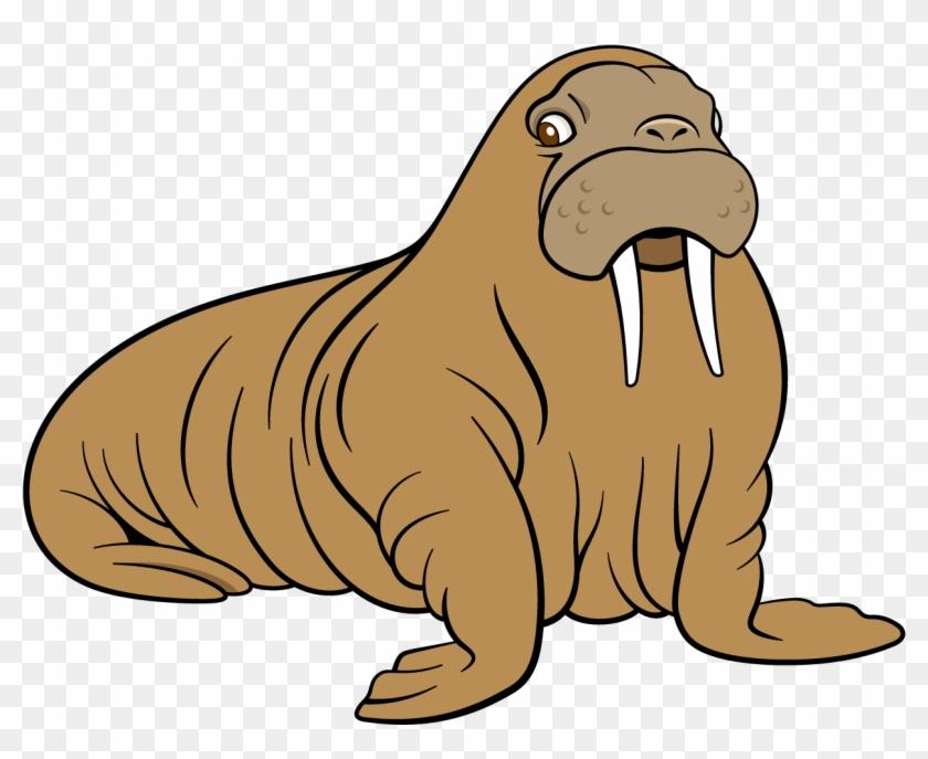 Walrus Sea Lion Dog Cartoon - Cartoon Sea Lion #279644