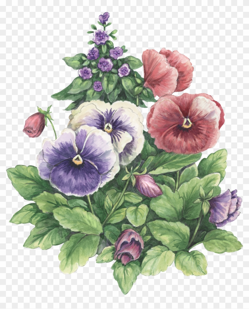Photoshop, Papo, Decoupage, Pictures Of Flowers, Colouring - Potted Plants Watercolor #280084