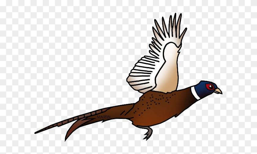 Free United States Clip Art By Phillip Martin, State - South Dakota's State Bird #280218