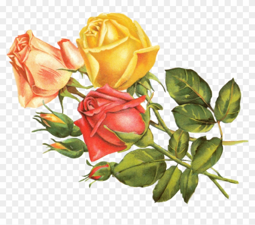 Vintage Flower Clipart Yellow Rose Vintage Yellow Flowers Png