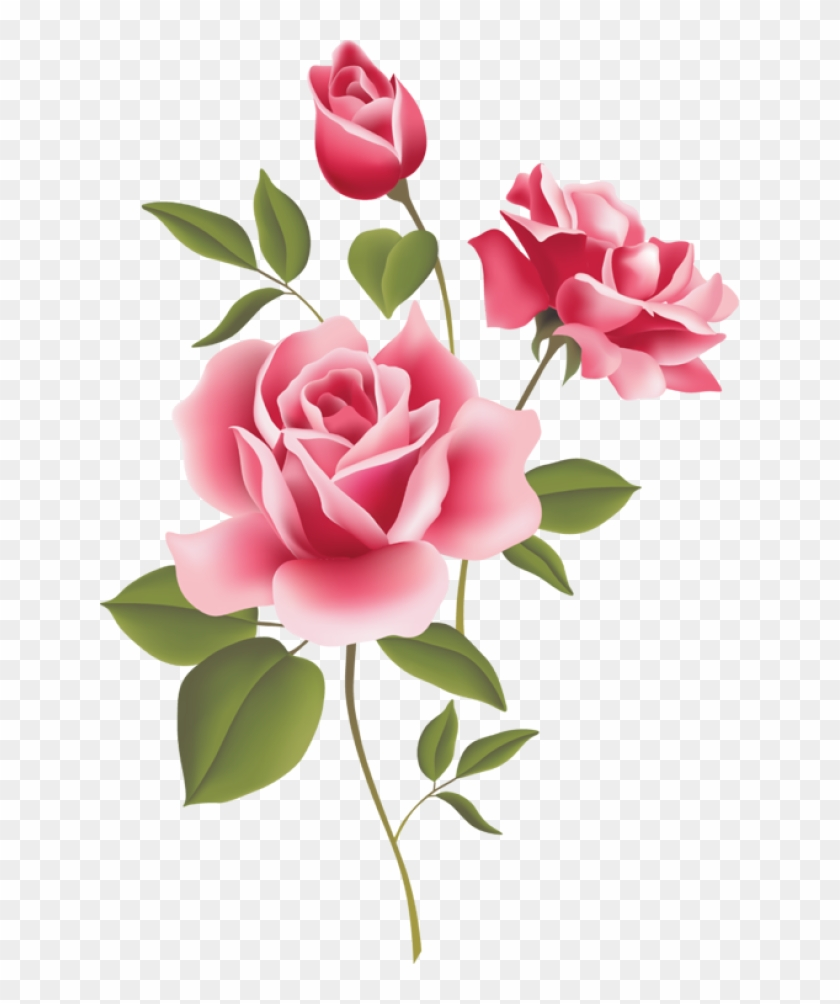 Pink Rose Borders Pink Rose Clip Art Border Free Transparent Png