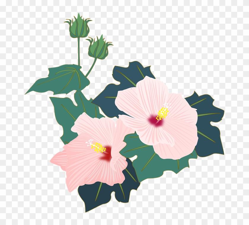 Cartoon Hibiscus Flower 26 Buy Clip Art Pink Flowers Free