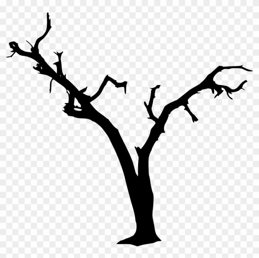 1269 × 1200 Px - Spooky Tree Silhouette #284541
