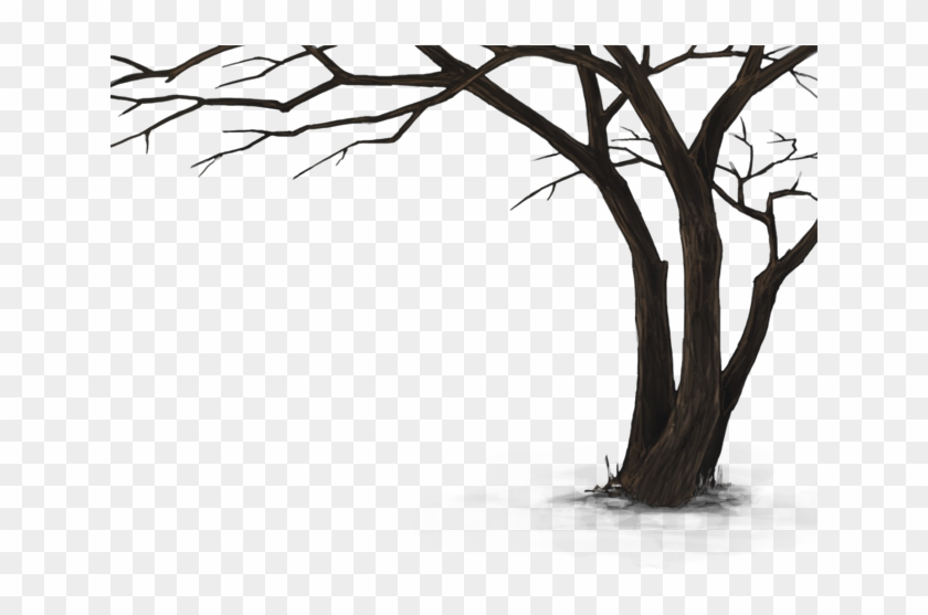 Dead Tree Hd Png #284551