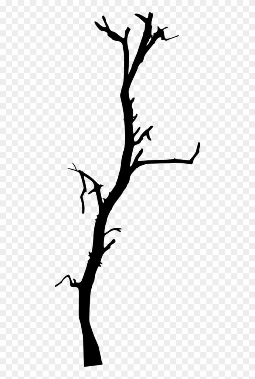 616 × 1500 Px - Dead Tree Silhouette #284574