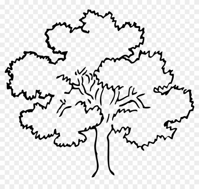Dead Tree Clipart 19, - Tree Black And White #284580