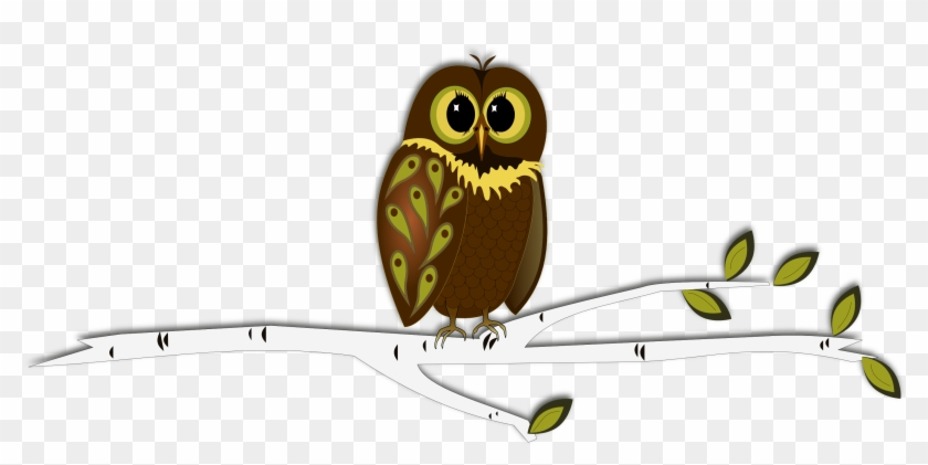 Owl On Tree Branch Clip Art - Owl On A Branch Drawings #285734