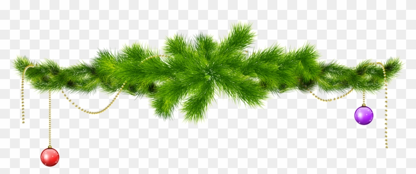 Transparent Pine Branch With Pine Cones Png Clipartu200b - Christmas Tree Branch Png #285825