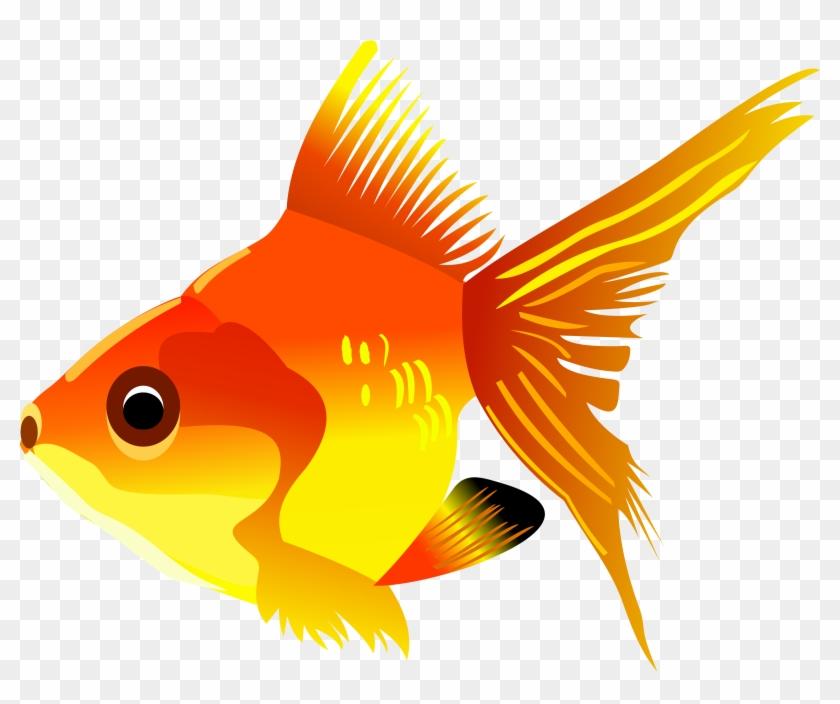 Cartoon Goldfish - Gold Fish Cartoon Png #286081