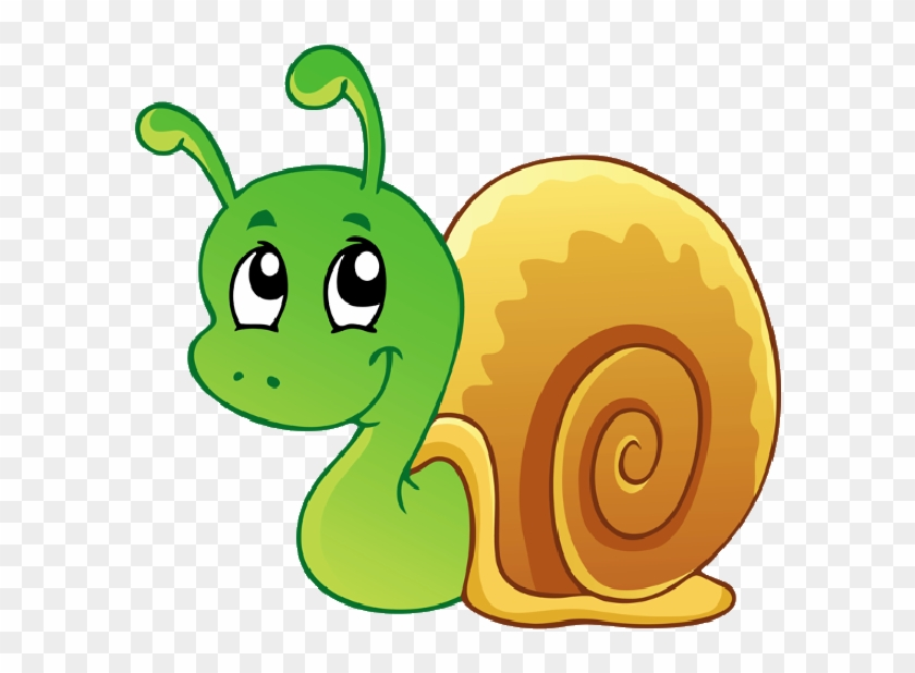 Use These Free Images Of Funny Snails Cartoon Garden Cartoon Picture Of Snail Free Transparent Png Clipart Images Download