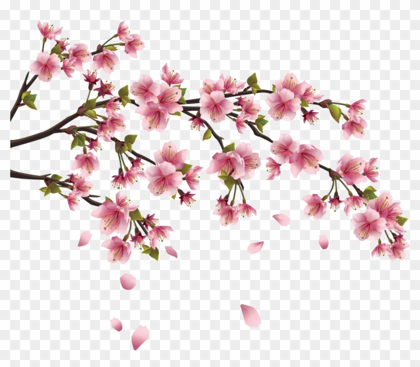 This Page Contains Information About Japanese Flower