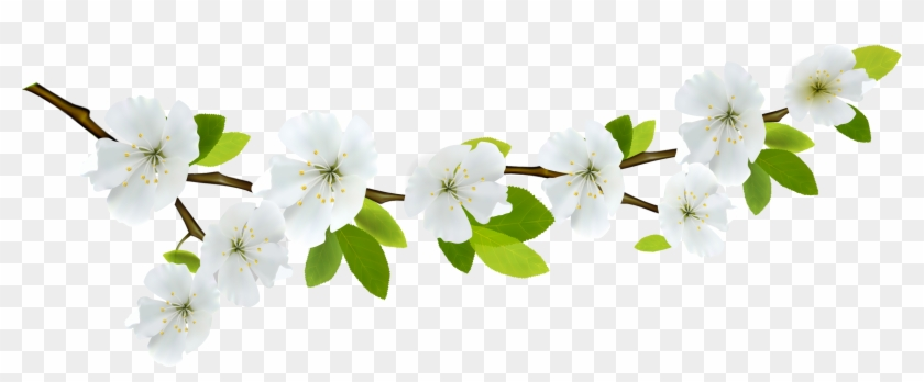 Branch Clipart Spring - Spring Leaves Png #287216