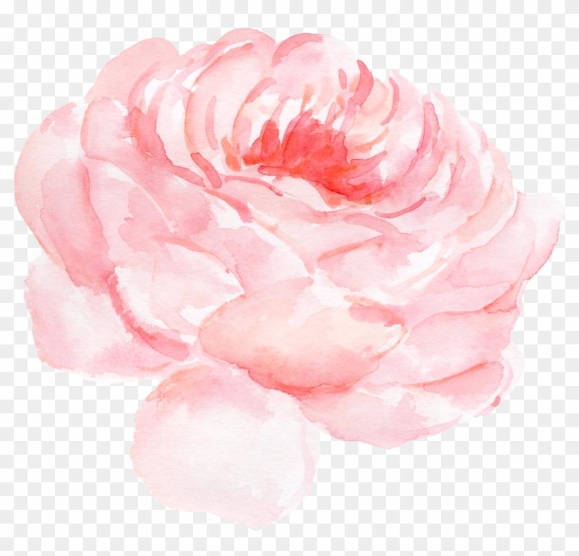 Paper Centifolia Roses Watercolor Painting Clip Art - Paper Centifolia Roses Watercolor Painting Clip Art #287693
