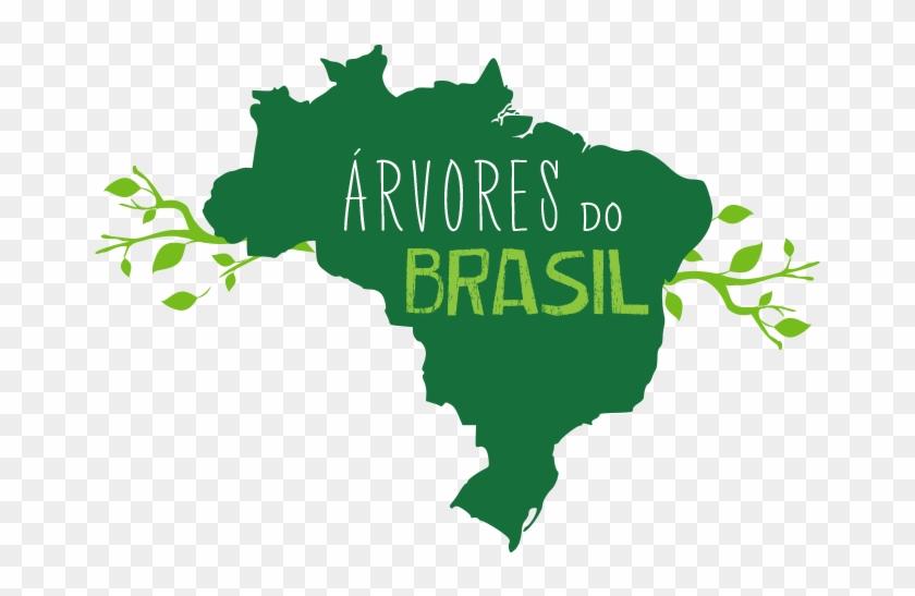 Brazil #287888