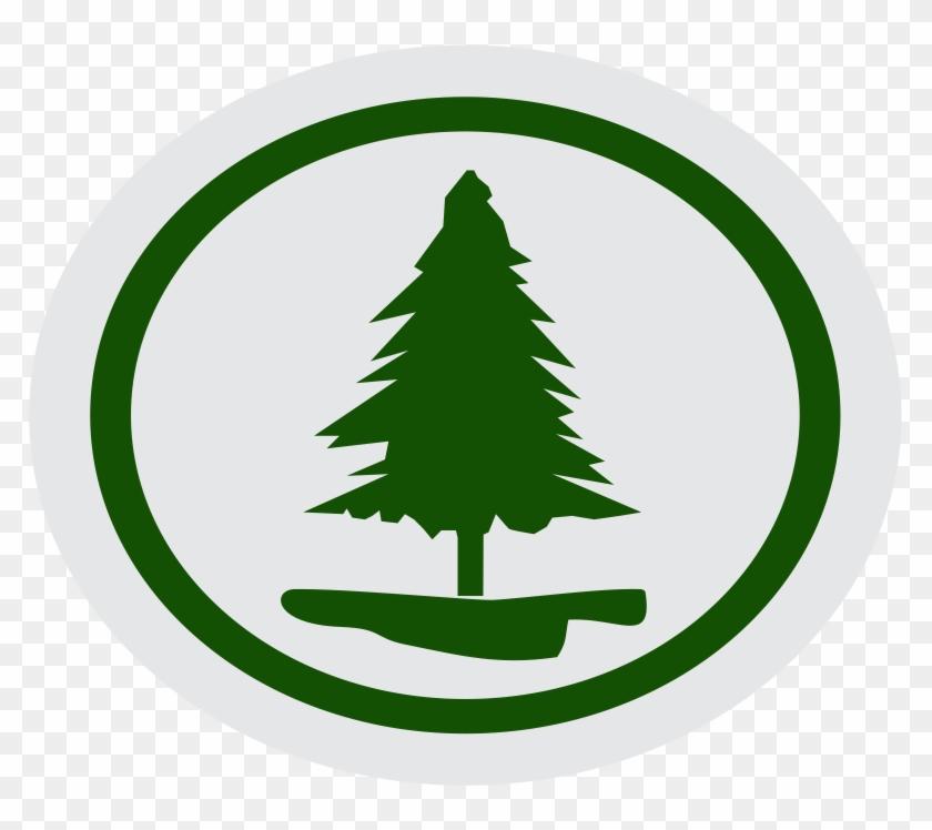 Contar 5 Historias Bíblicas De Árvores Que Tiveram - Christmas Tree #287918