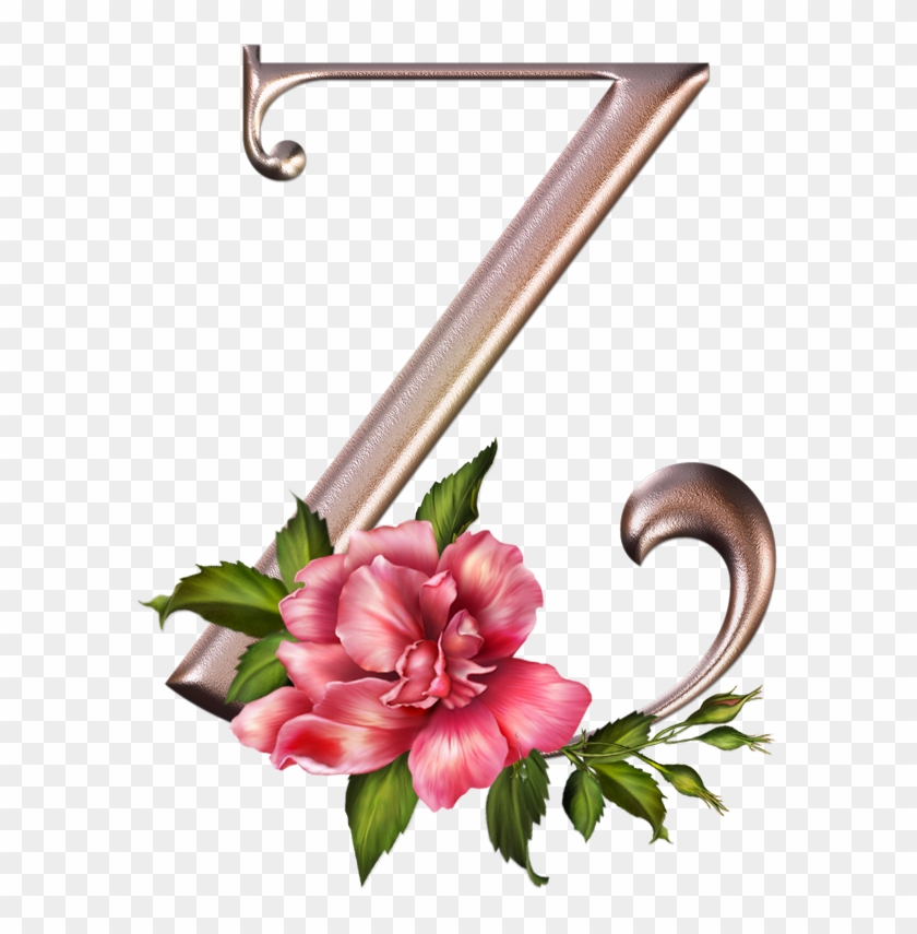 Alfabeto Rosas Lindo Abc Letras Cor De Rosa Com Flores - Letra Z Con Flores #288174