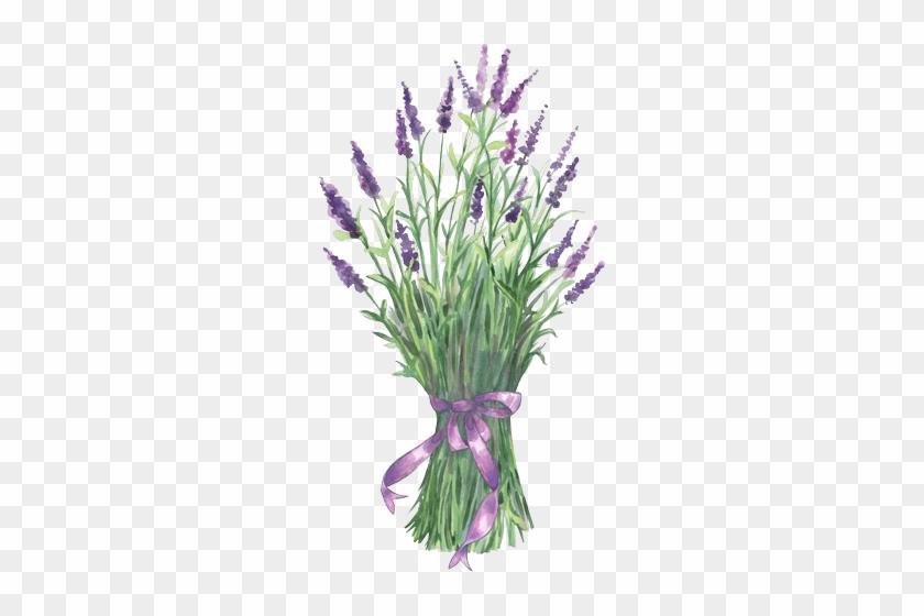 Cuadro - Lavender Clip Art #288193