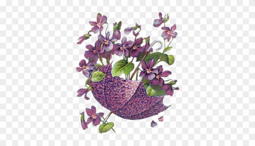 Pinturas Decorativas - Violeta Flower Vintage #288220