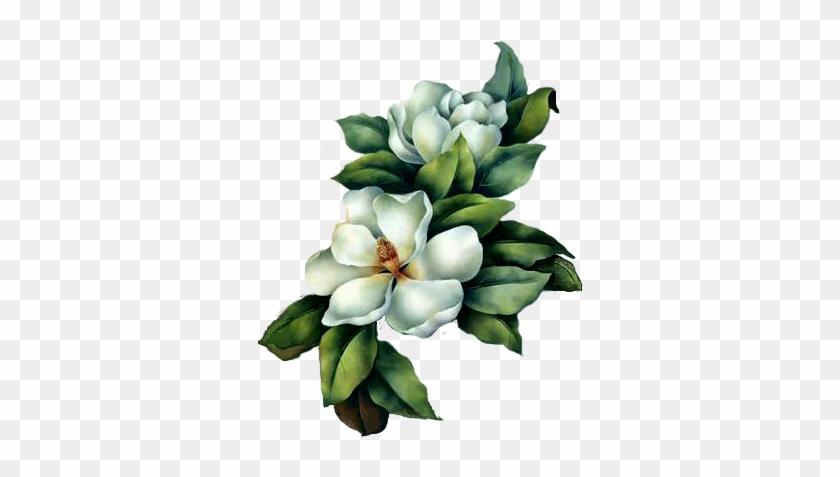 Resultado De Imagen Para Magnolias Flores - Address Book: Vintage Clock & Flowers #288221