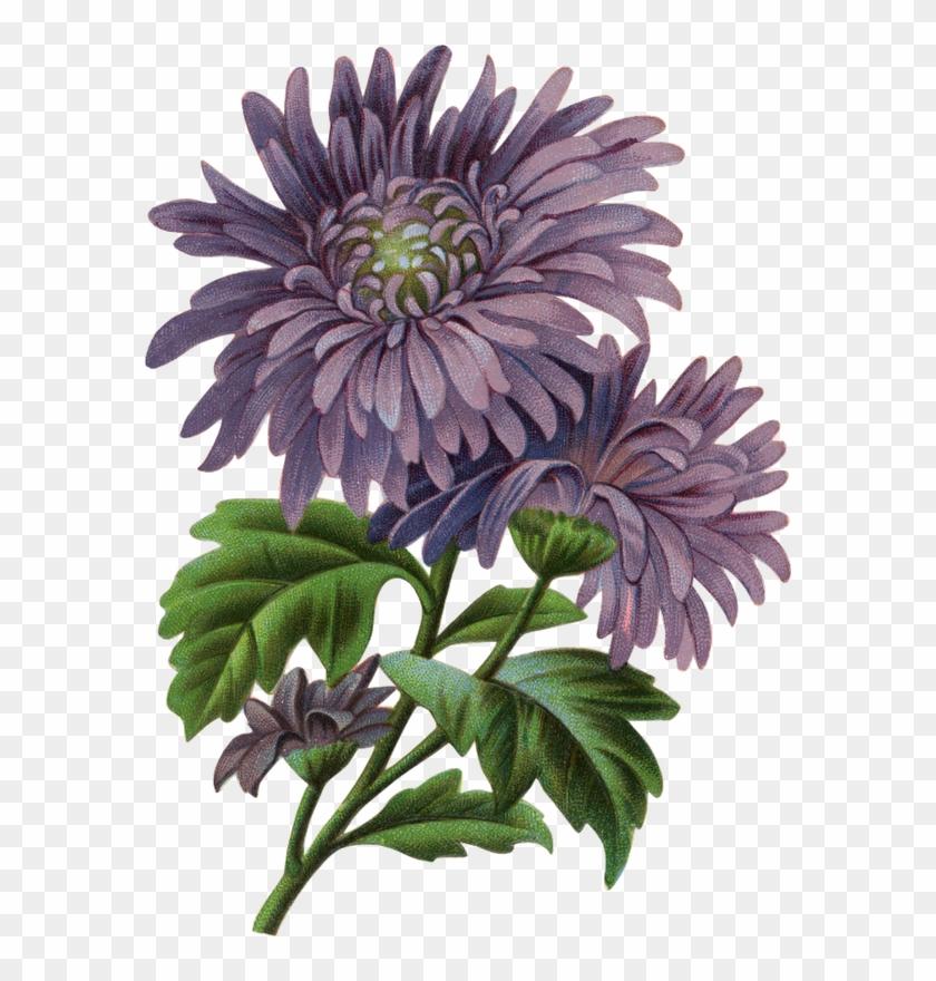 Arte - Flower #288241