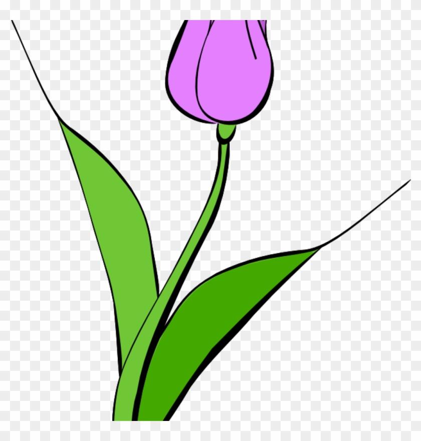Tulip Clipart Tulip Clipart Clipart Panda Free Clipart - Clip Art #288380