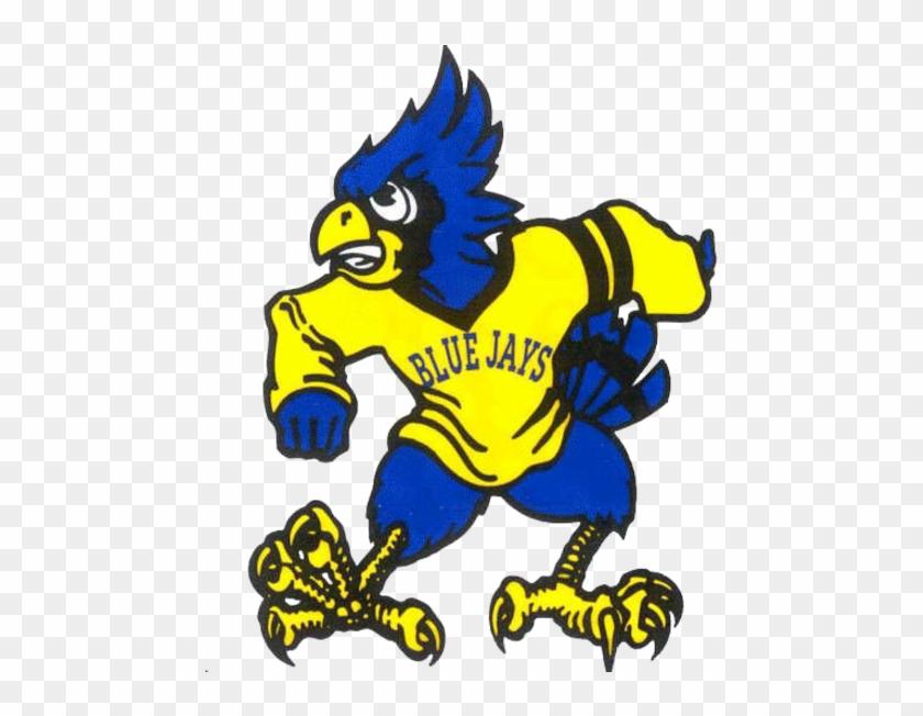 D - Delphos St John's Blue Jays #288923
