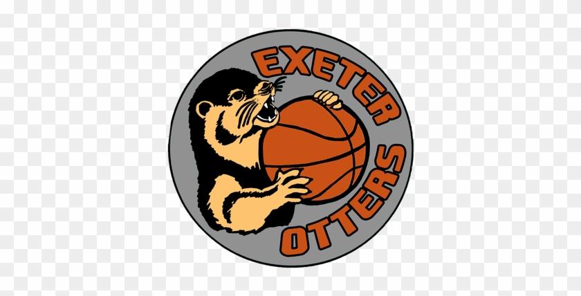 Devon Otters Wheelchair Basketball #289073