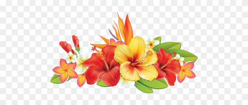 0 Cc5c4 B799d61a Xxxl - Tropical Flowers Vector Png #289273