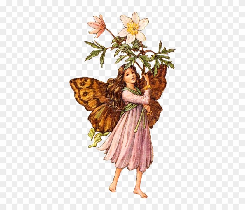 Images For Vintage / Vintage Free Images - Flower Fairies No Background #289347
