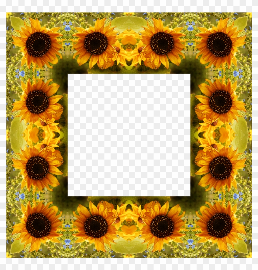 Clipart Sunflower Png Best Image - Portable Network Graphics #289393