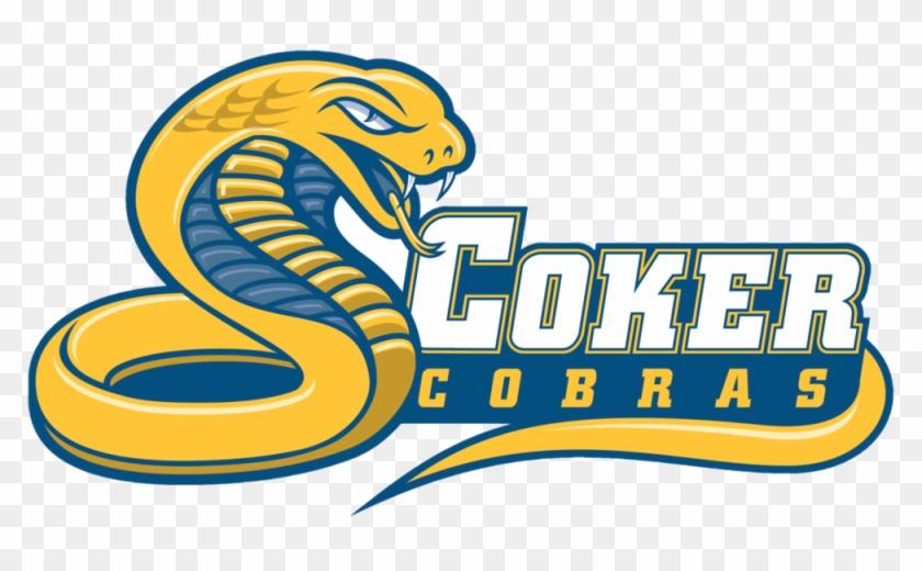 Coker Cobras - Coker Cobras #289700