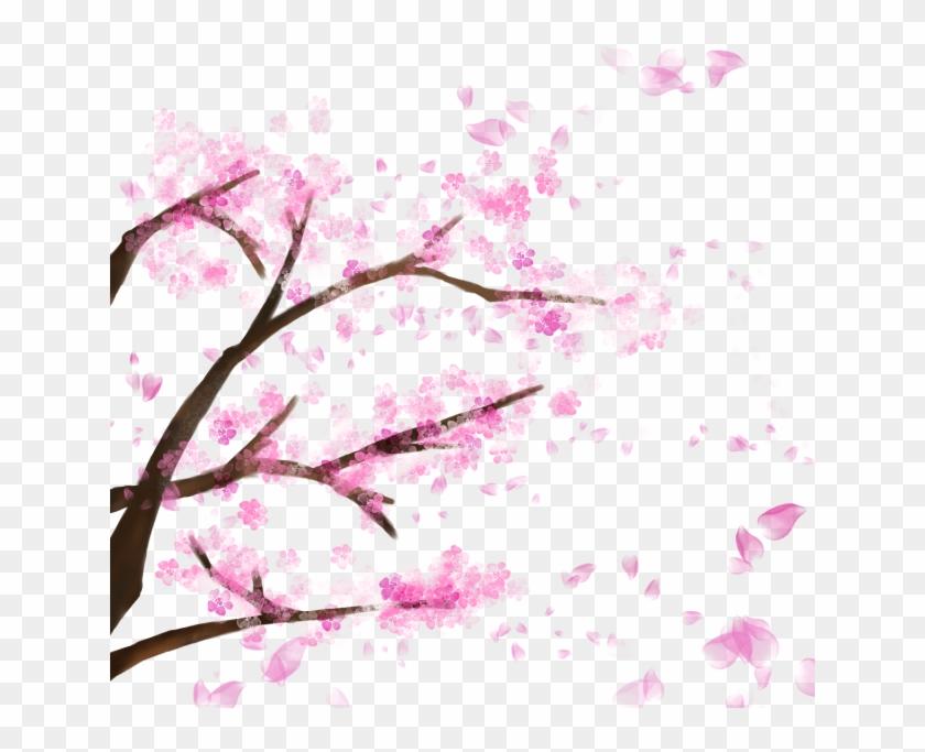 Blooming Cherry Tree, Cherry Blossom,sakura, Cherry, - Cherry Blossom Tree Transparent Backfround #289841