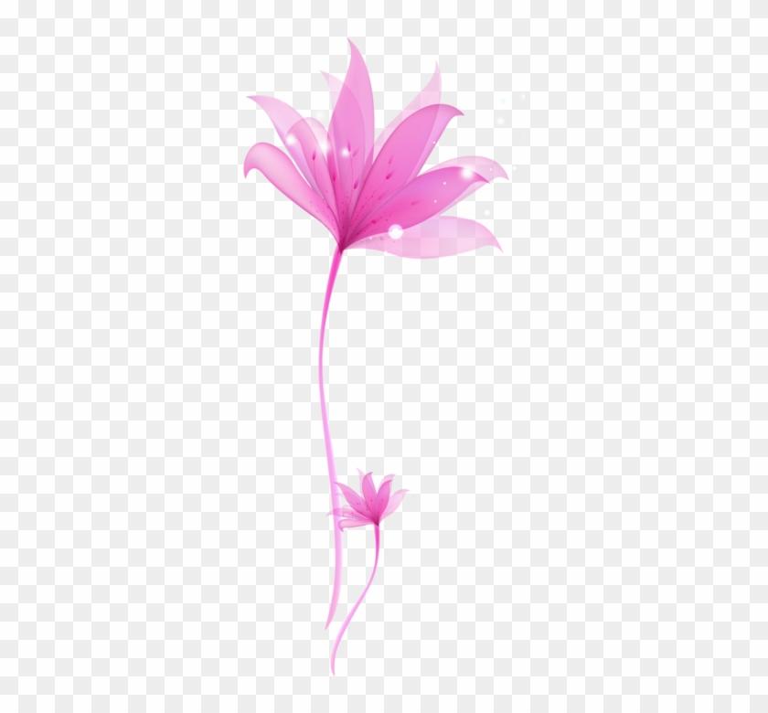 decorative pink flower png transparent ornament invitation card