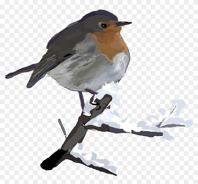 Robin Clipart Transparent - Christmas Robin Clip Art #289906