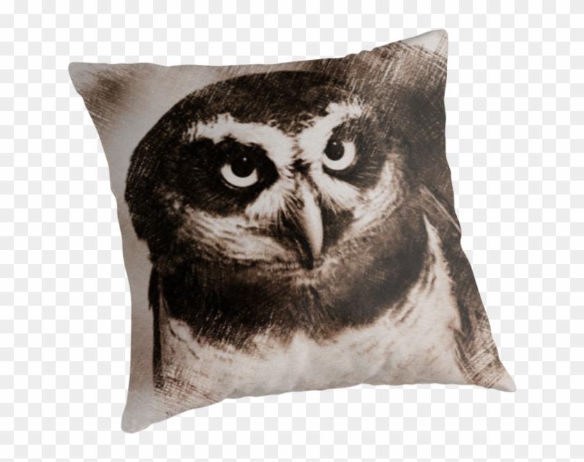 Owl Sketch 05 By Fantasytripp - Cushion #290059