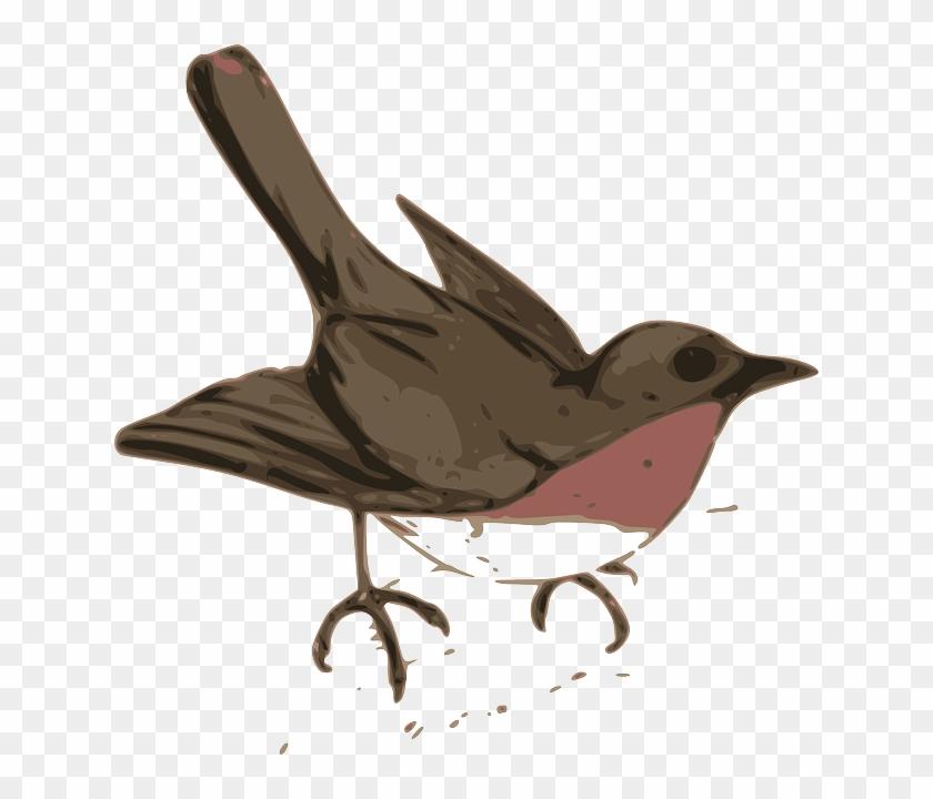 Brown, Outline, Silhouette, Cartoon, Birds - Cuckoo Clip Art #290078