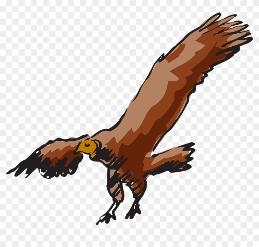 Fly Drawing, Bird, Flying, Wings, Art, Vulture, Fly - Clipart Vulture #290125